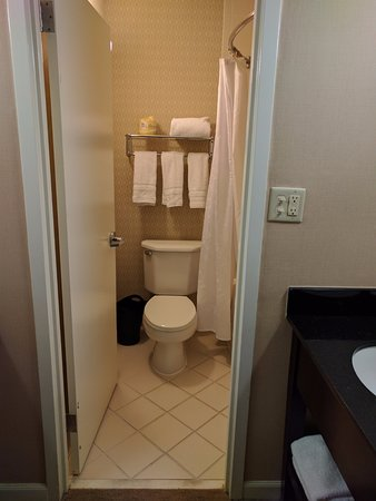 Sheraton Sand Key Resort: SUPER Small Bathroom