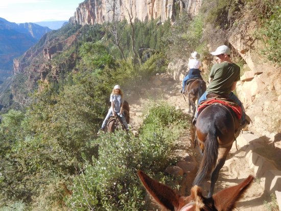 Canyon Trail Rides: On the way down...