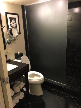 Hotel Le Marais: Bathroom with pocket door entry.
