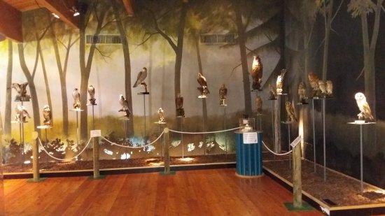 IDRO Ecomuseo delle Acque di Ridracoli