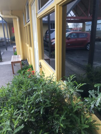 Hawera, New Zealand: Pleasant outdoor areas and tinted privacy glass in all rooms.