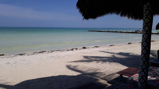 Holbox Dream Beach Front Hotel by Xperience Hotels: IMG-20170907-WA0014_large.jpg