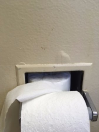 Howard Johnson by Wyndham South Lake Tahoe: brown smudge near toilet paper dispenser