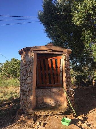 Lloret de Vista Alegre, España: Eco Ruberts