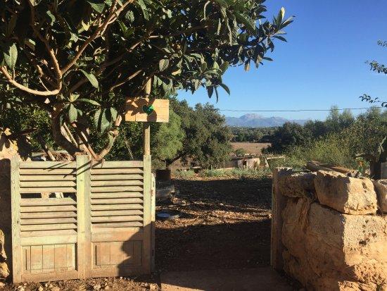 Lloret de Vista Alegre, Испания: Eco Ruberts