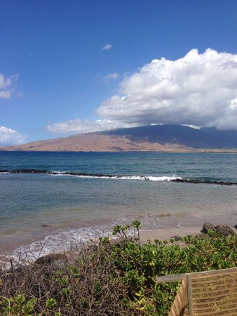 Hawaiian Islands Humpback Whale National Marine Sanctuary: Fish Pond 2