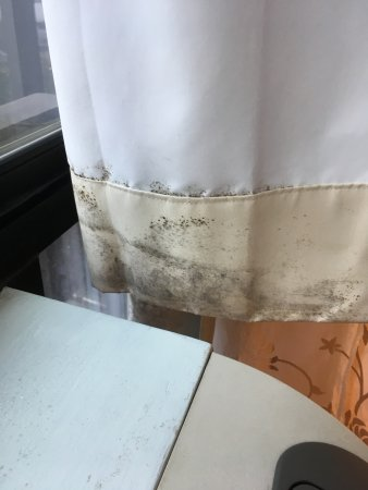 Bay Park Hotel: Mold on the window curtains