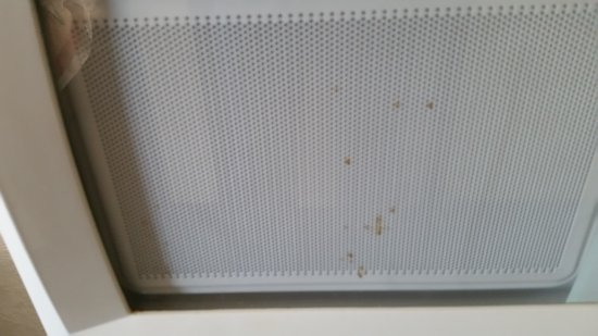 Super 8 San Antonio/Fiesta: coffee spill on front of microwave