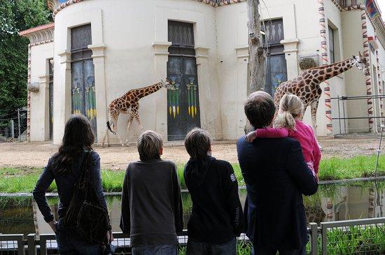 Holiday Inn Express Antwerp City North : Antwerp Zoo