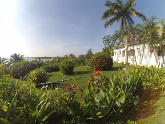 Turquoise Bay Dive & Beach Resort Φωτογραφία