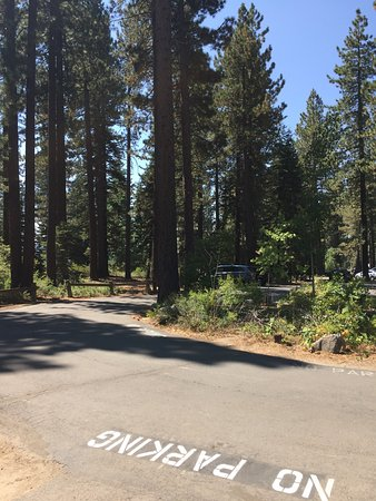 Tahoe City, CA: photo3.jpg