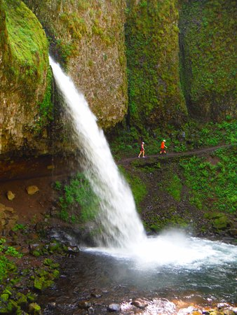 Columbia River Gorge: One of many falls along highway 30 - hike behind the falls