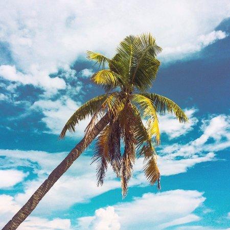 Bounty Beach : ^_^