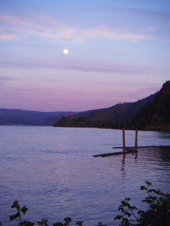 Best Western Plus Hood River Inn: Night sky from pool/spa deck