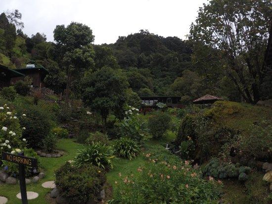 San Gerardo de Dota, Kosta Rika: Foto los jardines del hotel