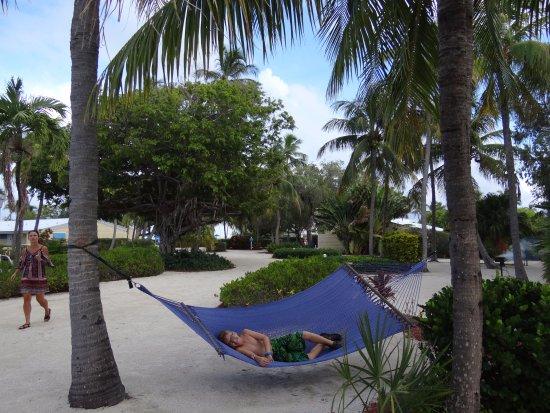 Islander Resort, a Guy Harvey Outpost Φωτογραφία