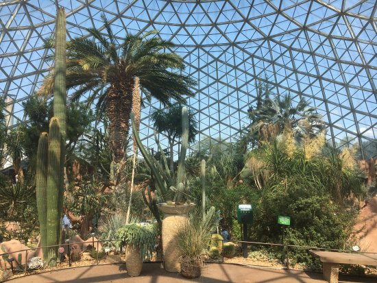 Mitchell Park Horticultural Conservatory (The Domes): photo1.jpg
