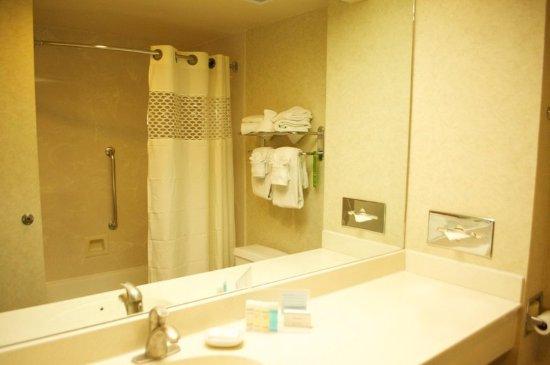 Hampton Inn & Suites Flagstaff: Bathroom