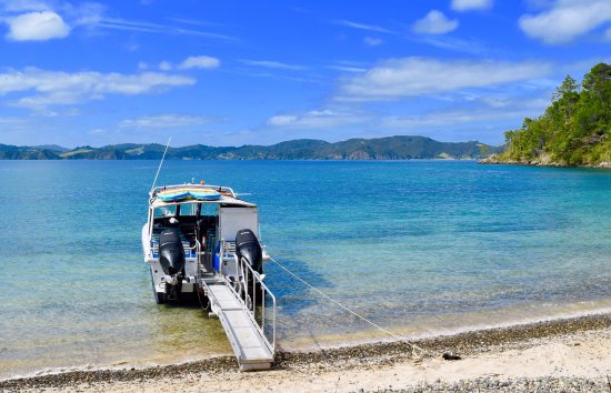 Sea Shuttle Bay of Islands: Customized ramp takes you from directly from boat to beach without even having to get your feet