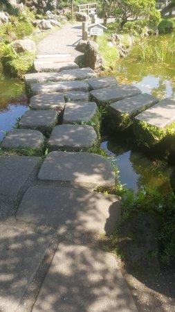 japanese tea garden stone bridgewalkway