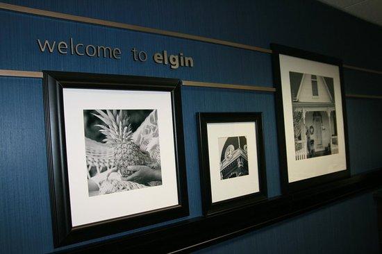 เอลจิน, อิลลินอยส์: Welcome to Elgin
