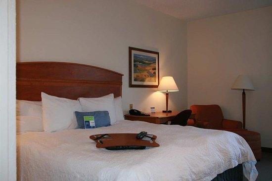 Elgin, IL: Standard King Room