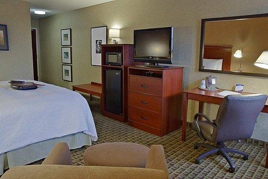 Hampton Inn & Suites Valparaiso: Accessible 1 Double Bed