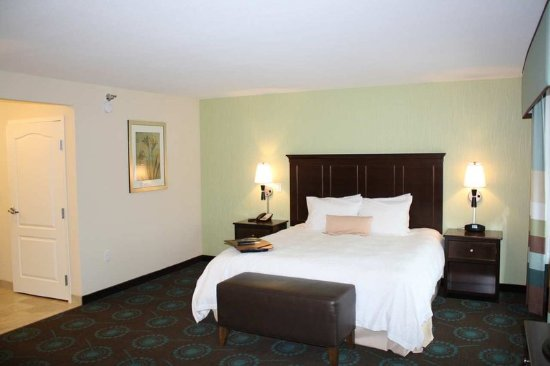 Saint Cloud, MN: 1 King Accessible Suite