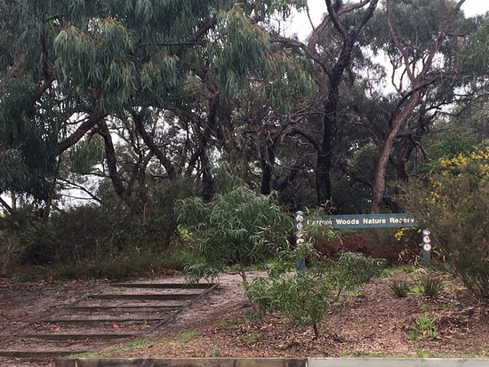 Carrum Woods Reserve