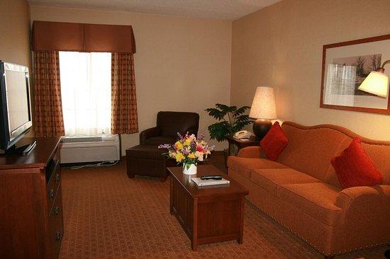 Hampton Inn & Suites Rochester/Victor: Standard Suite Living Room