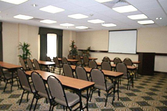 Hampton Inn & Suites Natchez: Meeting Room