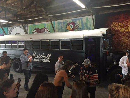 Ninja Buses