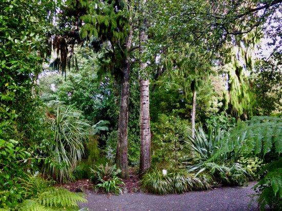 Picture of christchurch botanic gardens for Landscape gardeners christchurch