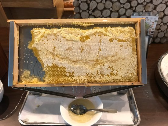 Wonderful fresh honey from a local bee farm included each morning in