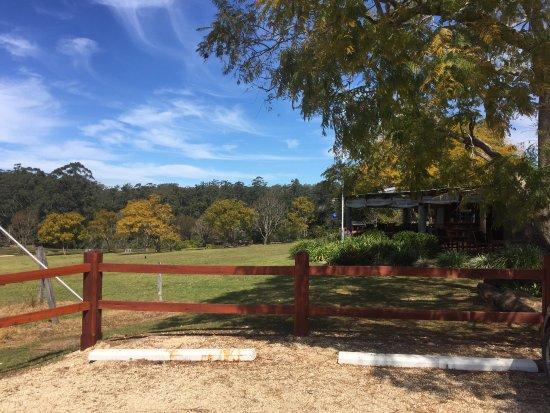 Wauchope, Australia: photo0.jpg