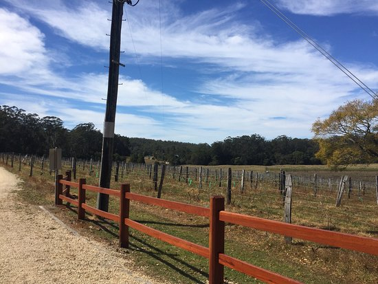 Wauchope, Australia: photo3.jpg