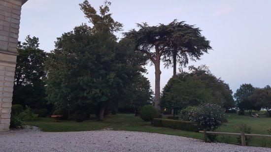 Saint-Estephe, فرنسا: Vu sur le parc.