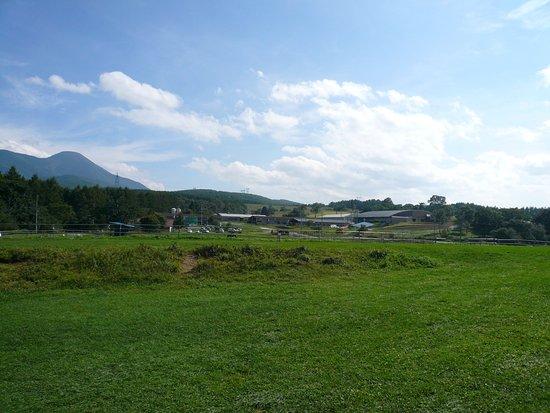 Nagato Farm