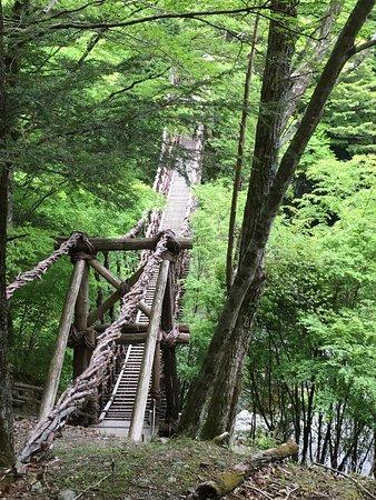 Okuiya Niju Kazurabashi Bridge (三好市) - 評論 Okuiya Niju Kazurabashi Bridge