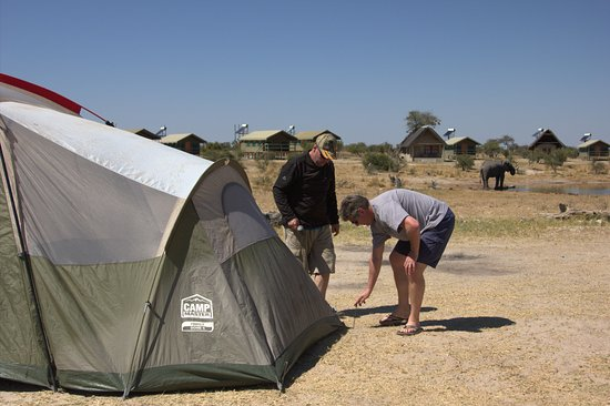 Nata, Botswana: Setting up camp with ellie in the background
