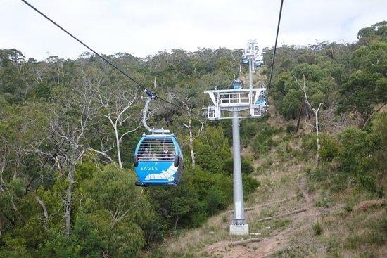Arthurs Seat, Australia: photo1.jpg