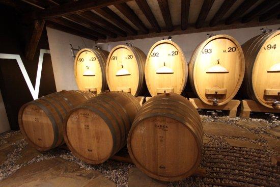 Dolegna del Collio, Italia: cantina