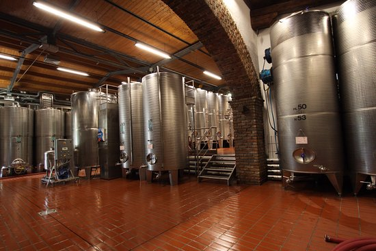 Dolegna del Collio, Italia: botti di fermentazione