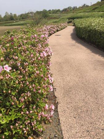 Daijoji Kyuryo Park