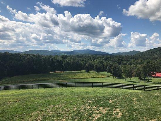 Charlottesville, VA: photo2.jpg
