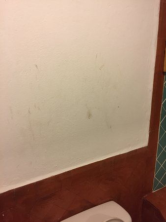 Hansa Beach Resort: the wall behind the toilet