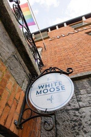 white moose hotel dublin