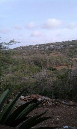 Kralendijk, Bonaire: Omgeving Seru Largu Bonaire