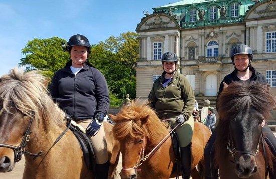 Krathusgaard hesteudlejning