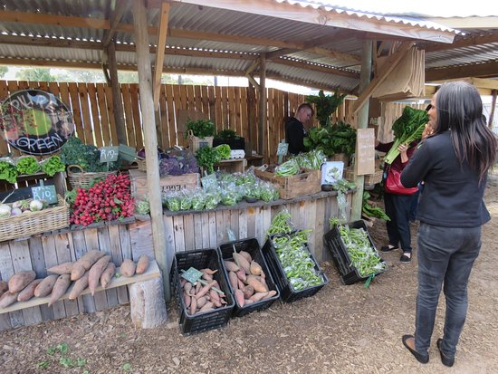 Hermanus, جنوب أفريقيا: Excellent local produce